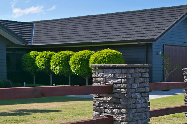 Penny Grove, Brentwood, Taupo
