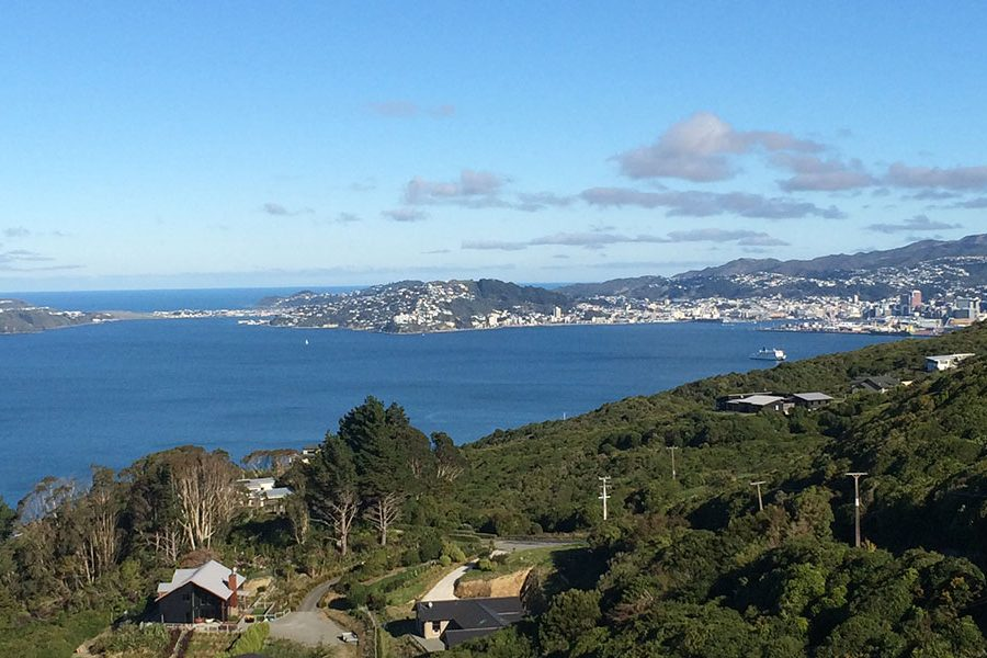 New House & Land Packages: The Lookout Wellington